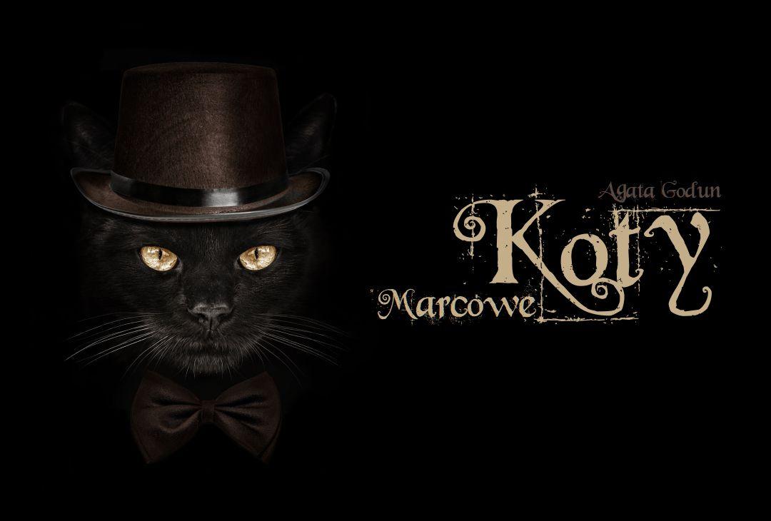 Koty Marcowe